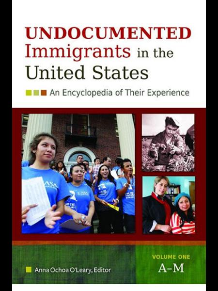 Undeocumented Immigrants